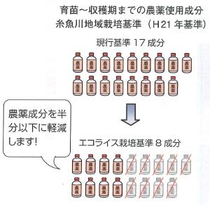 JAひすい 糸魚川産米「エコライス」栽培