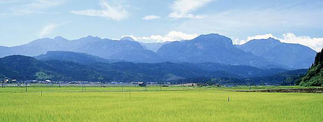糸魚川の田園